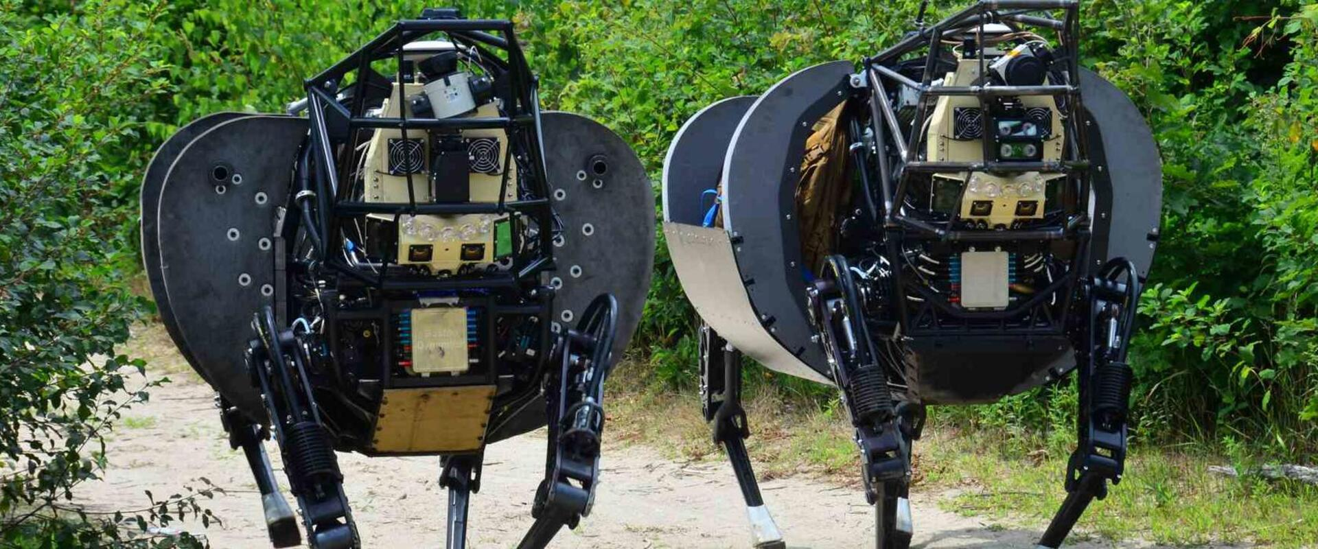 LS3 Robots - Legged Squad Support Systems