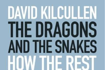 Kilcullen Dragons and Snakes